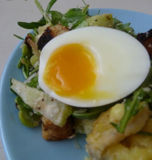 Boiled Egg and Salad