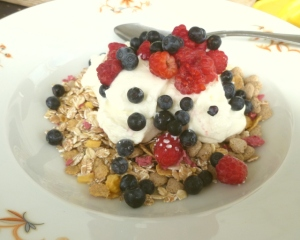 Muesli and foraged berries