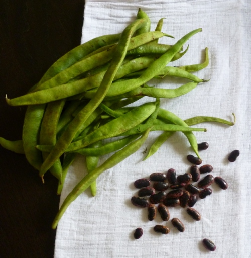 Runner Beans, Unknown var