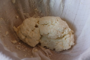 Curds, after most of the whey has run off