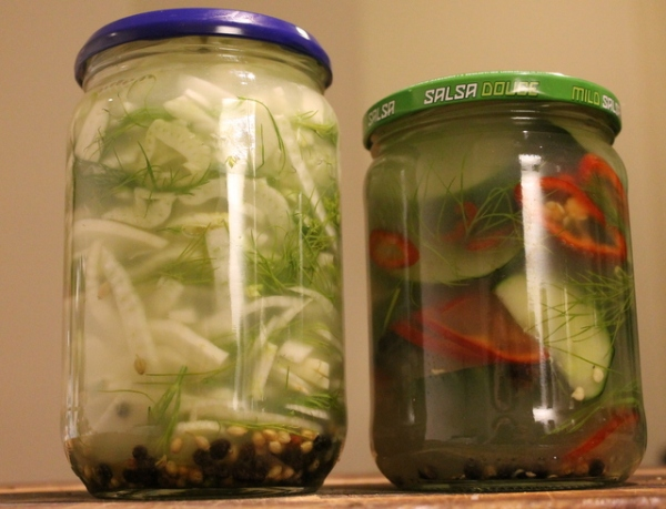 Lacto fermented fennel and cucumber